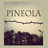 Pineola by Pineola