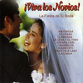 Play & Download ¡Viva los Novios! (La Fiesta de Tu Boda) by Various Artists | Napster
