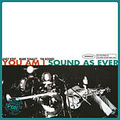 Sound As Ever (Superunreal Edition) by You Am I