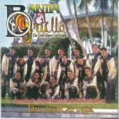 Recordando Al Gran Maestro De La Musica Grullense by Banda El Grullo