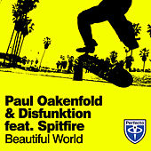Beautiful World by Paul Oakenfold