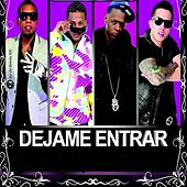Play & Download Dejame Entrar (feat. Secreto, Black Point & Randy) by De La Ghetto | Napster