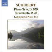 Play & Download SCHUBERT: Piano Trio No. 2 / Notturno by Kungsbacka Trio | Napster