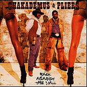 Back Against The Wall by Chaka Demus and Pliers