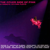 Play & Download The Other Side Of Pink - A Tribute To Pink Floyd by Various Artists | Napster