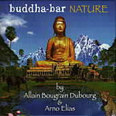Play & Download Buddha Bar: Nature by Arno Elias | Napster