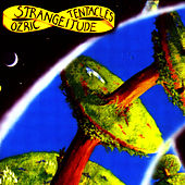Play & Download Strangeitude by Ozric Tentacles | Napster