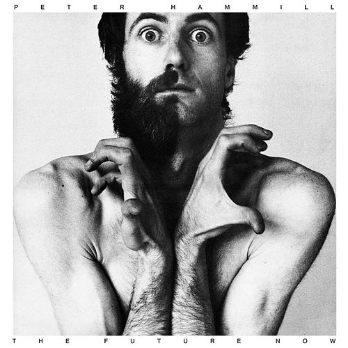 The Future Now by Peter Hammill