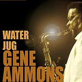 Play & Download Water Jug by Gene Ammons | Napster