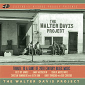 Play & Download The Walter Davis Project by Various Artists | Napster