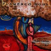 Flamenco Soul by Pedro Cortes