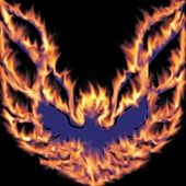 Play & Download Beyond Doubt - Single by Firebird | Napster