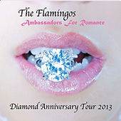 Play & Download Diamond Anniversary Tour 2013 by The Flamingos | Napster