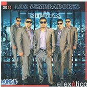 Play & Download El Exotico by Los Sembradores De La Sierra | Napster