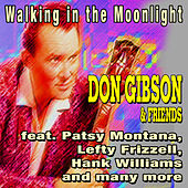 Play & Download Walking in the Moonlight - Don Gibson & Friends by Various Artists | Napster