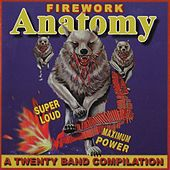 Firework Anatomy - A Twenty Band Compilation by Various Artists