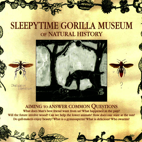 Play & Download Of Natural History by Sleepytime Gorilla Museum | Napster