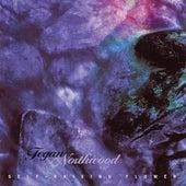 Play & Download Self-Raising Flower by Tegan Northwood | Napster