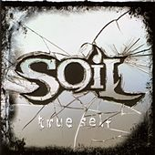 True Self (Clean) by Soil