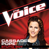 Play & Download Stupid Boy by Cassadee Pope | Napster