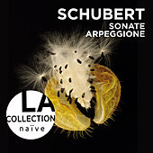 Schubert: Sonate Arpeggione by Anne Gastinel