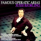 Play & Download Jussi Bjorling Famous Operatic Arias by Jussi Bjorling | Napster