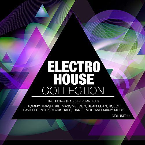Electro House Collection, Vol. 11 by Various Artists