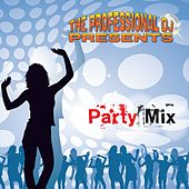 Party Mix by Various Artists