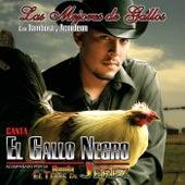 Play & Download Las Mejores De Gallos, Con Tambora Y Acordeon by El Gallo Negro | Napster