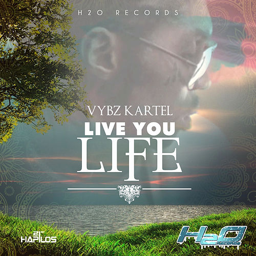 Play & Download Live You Life - Single by VYBZ Kartel | Napster