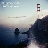 Play & Download I Say What I Want by Birdmonster | Napster