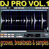 Dj Pro Volume One by The Mixmasters