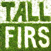 Play & Download Tall Firs by Tall Firs | Napster