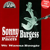 Play & Download We Wanna Boogie by Sonny Burgess | Napster
