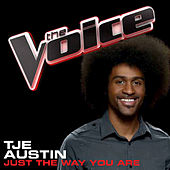Just The Way You Are by Tje Austin