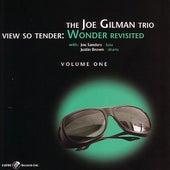 View So Tender: Wonder Revisited by Joe Gilman