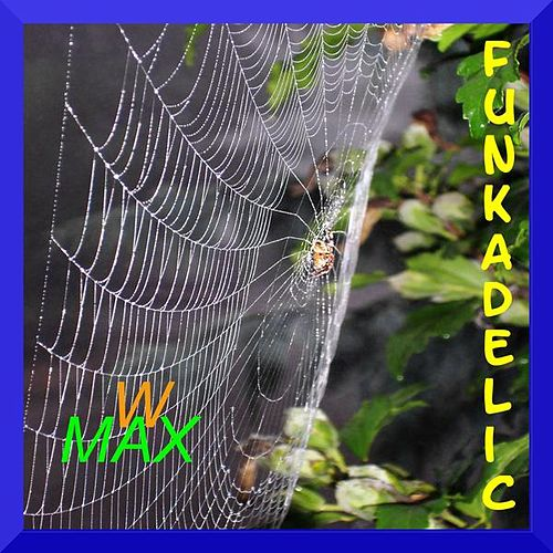 Play & Download Funkadelic by W Max | Napster