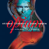 Play & Download Opium by Ottmar Liebert | Napster