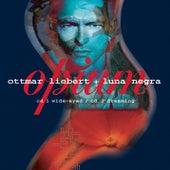 Opium by Ottmar Liebert