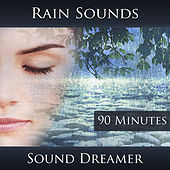 Rain Sounds - 90 Minutes by Sound Dreamer