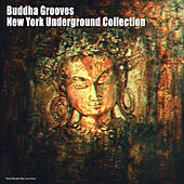 Play & Download Buddha Grooves - New York Underground Collection by Various Artists | Napster