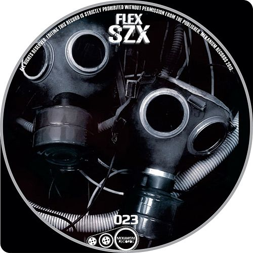 Szx - Single by Flex