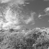 Ambient Project, Vol. 1 by Ambient Project