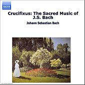 Play & Download Crucifixus: The Sacred Music of J.S. Bach by Various Artists | Napster