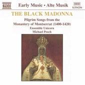 Black Madonna by Belinda Sykes