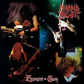 Play & Download Entangled in Chaos by Morbid Angel | Napster