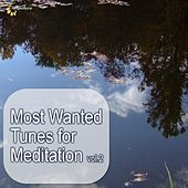 Play & Download Most Wanted Tunes For Meditation, Vol. 2 by Various Artists | Napster