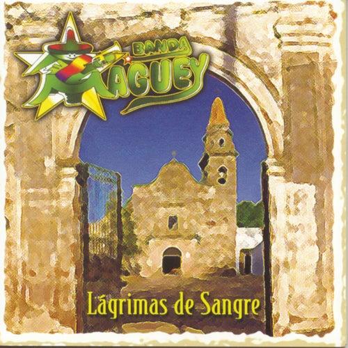 Play & Download Lagrimas De Sangre by Banda Maguey | Napster