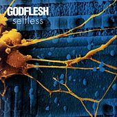 Play & Download Xynobis by Godflesh | Napster