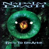 Play & Download Breed to Breathe by Napalm Death | Napster